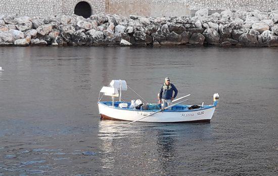 pesca-alla-lampara